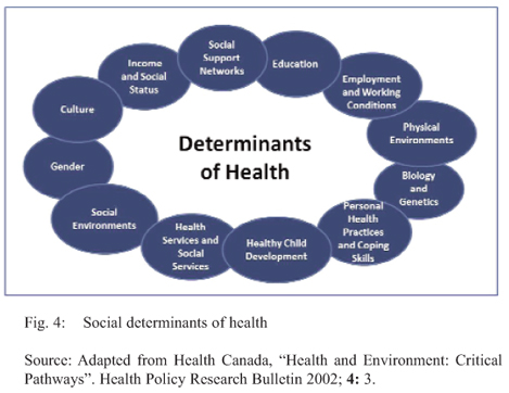 "inequalities in health care greatly impacts lower class communities ""inequality effects  mental health problems or cardiac disease for lower-income negative health effects to living in communities with."