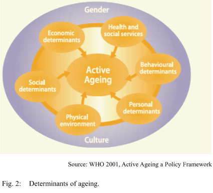 aging theory persuasive  aging theory persuasive mjs university of phoenix aging theory persuasive theories about becoming old usually begin with ideas or beliefs that an individual.
